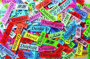 bunte Papierschnipsel mit dem Wort Danke in mehreren Sprachen