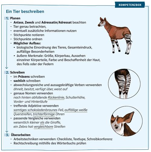Beispiel aus Deutsch kompetent für eine Kompetenzbox mit Anleitung