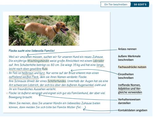 """Beispiel aus Deutsch kompetent für """"So-geht's"""""""